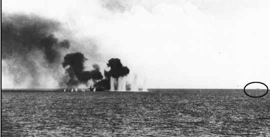 Гамб бей яп крейсернагориз