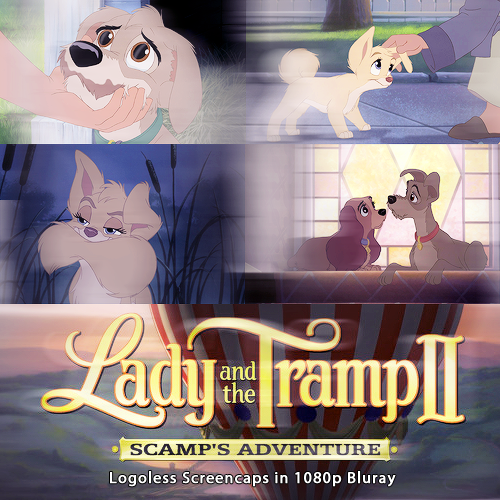 Lady And The Tramp Ii Scamp S Adventure 2001 Bluray 1080p Logoless Screencaps Screencapped Livejournal