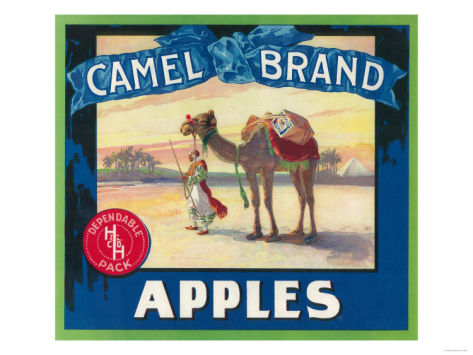 camel-apple-label-washington-state_i-G-29-2991-2NMQD00Z