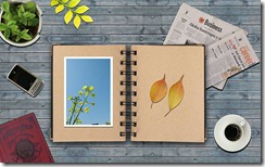 Art_and_Design_Creative_Design_Fall_leaves_on_dairy_8004