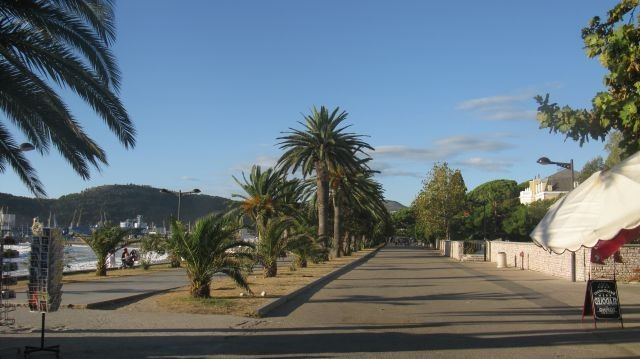 Пальмы на набережной