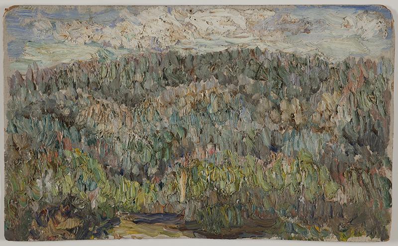 Majjskijj-les.-1937б