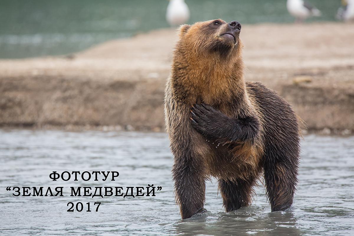 """Фототур """"Земля медведей"""" 2017"""