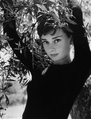 H-Audrey-Hepburn-PAR388441