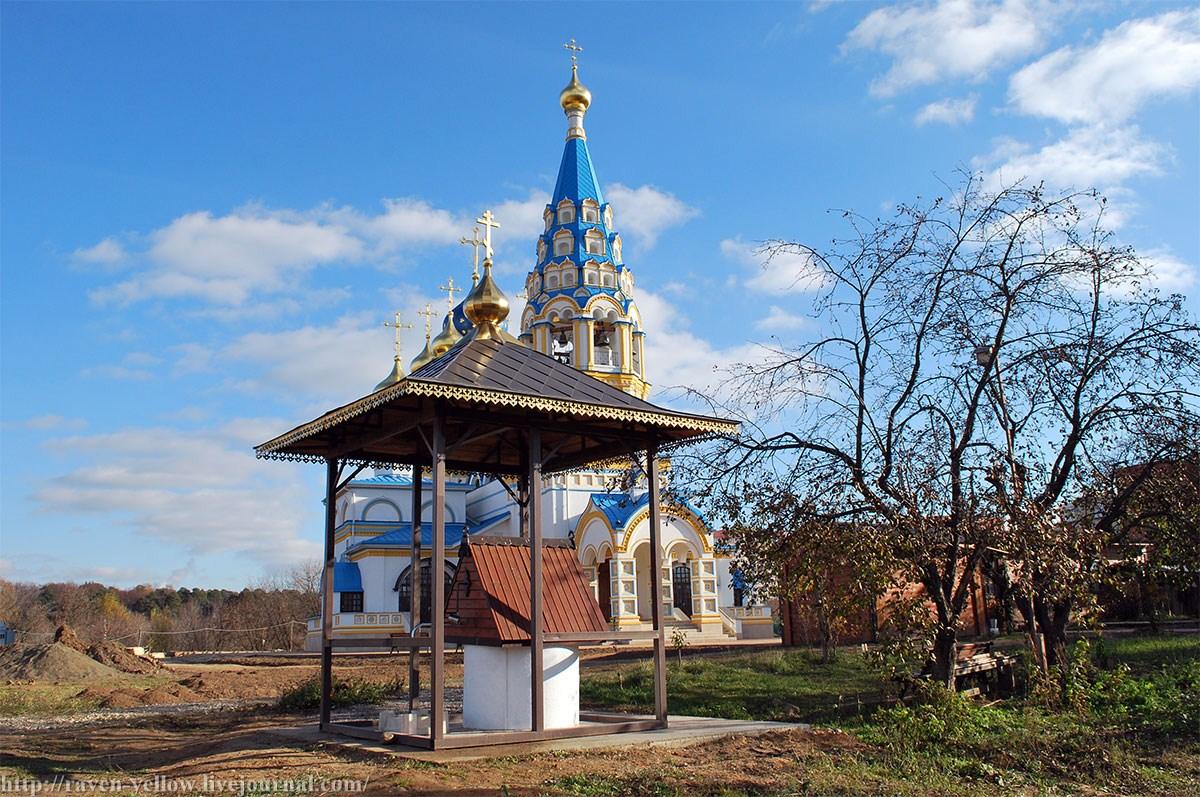 Цвет в поселке московском