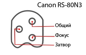 canon-rs-80n3