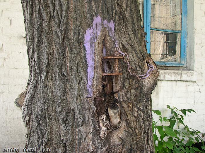 Златая цепь на дубе том - дерево из сказки Пушкина в Димитрове