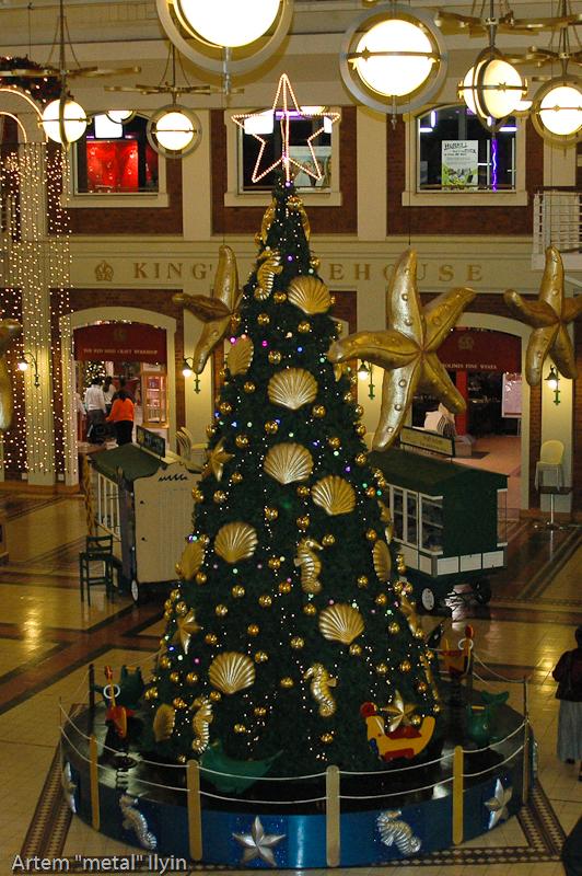 Рождественская елка украшена игрушками в форме ракушек и морских звезд, КейпТаун, Южная Африка