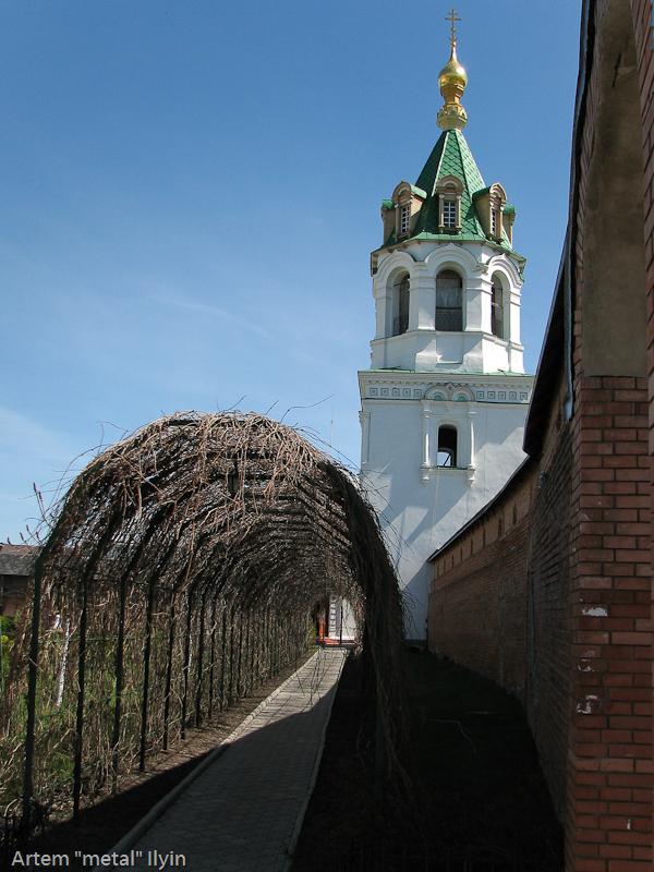 Пешеходный тоннель из виноградной лозы в Зимненском монастыре, село Зимнее, Волынская область