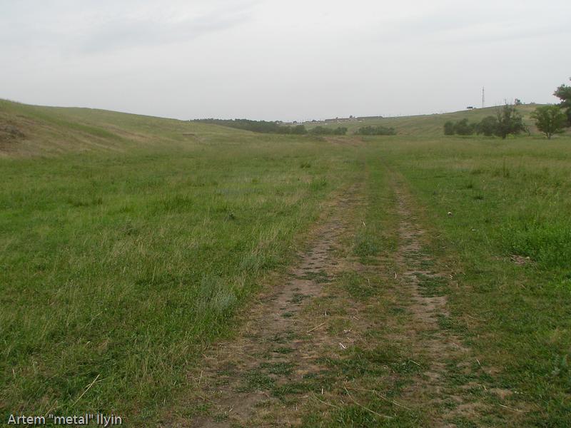 За год раллийные дороги зарастают травой