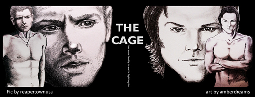 cage banner 525