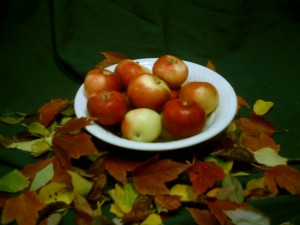apples Rosh Hashanah