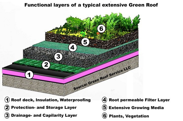 Green roof - details