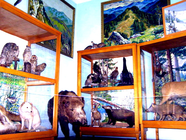 Ratusha Exhibit