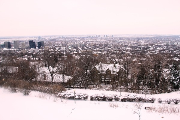View of Montreal 2
