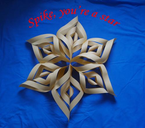 Spike_star