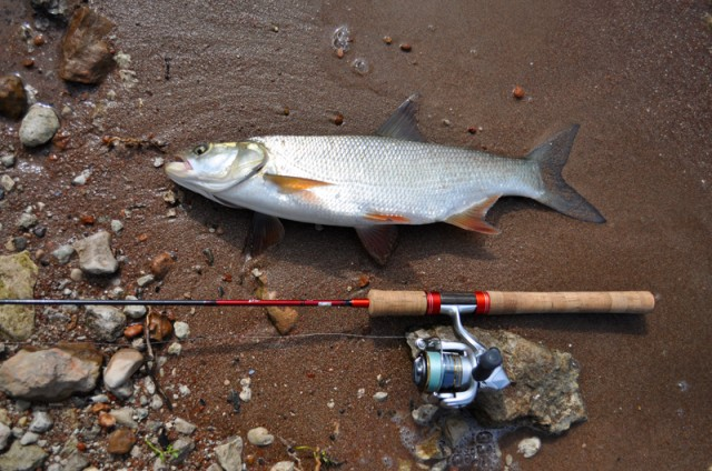Рыбалка на неделю