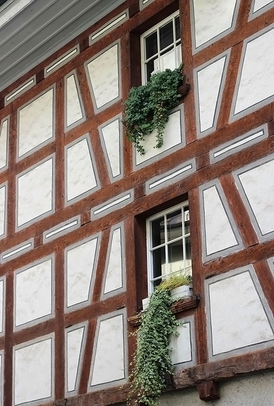 окна5