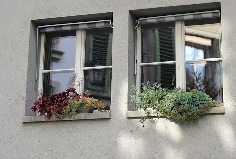 окна6