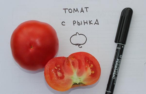 томат императрица фото отзывы