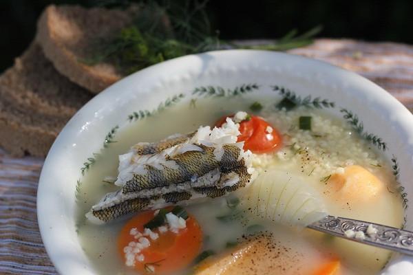 Рецепт: Любимая уха из судачков