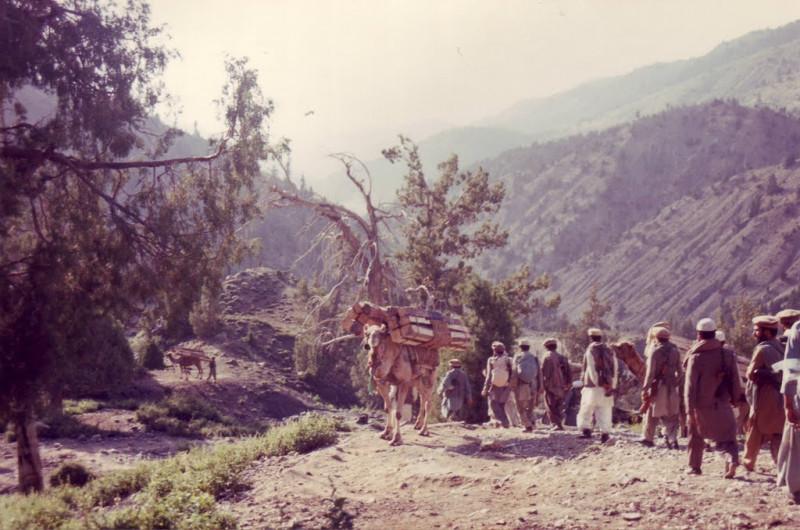 караван снабжения боевиков