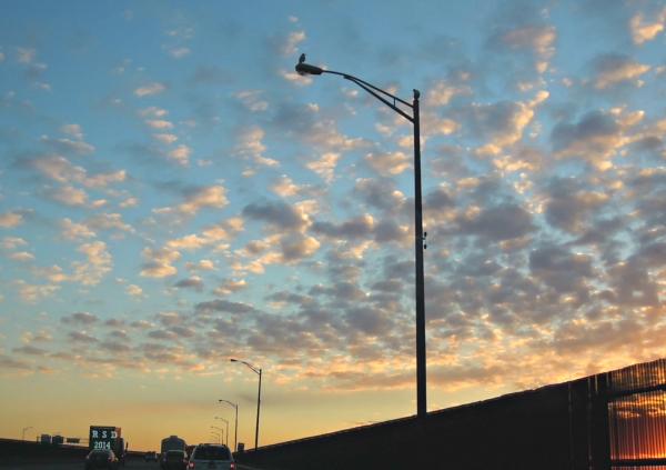 new london freeway sunrise 1.5signed