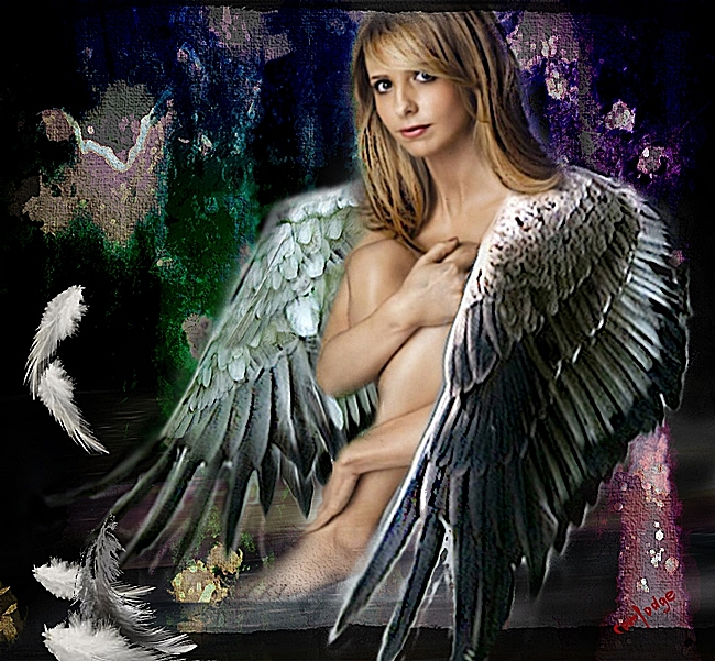 WingsbyComlodge650x601