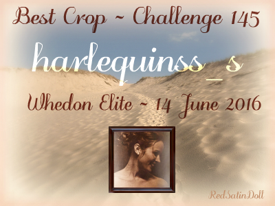 we145bestcropbanner_harlequinss_s_rsd2016.png