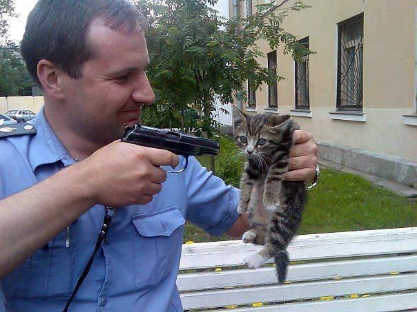 Суть политики. Оно Вам надо, котаны?