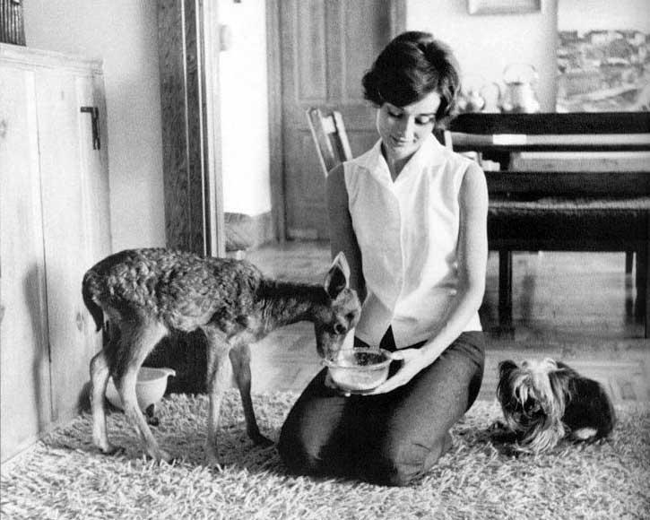 Одри Хепберн знала, как создать у людей образ прекрасного. Умеешь ли это ты, мой пламенный друг?