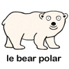 Martin does not know the French word for polar bear