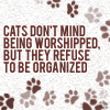 Cats refuse