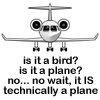 Gerti is a plane