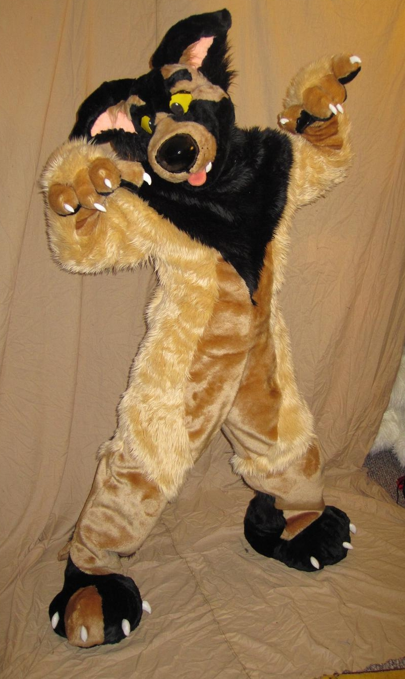 Aero Dog New Fursuit From Crafty Coyo Costumes How Do