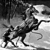 Loki and horse