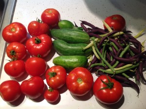 Pile of tomatoes, cucumbers, and snap beans in three colors