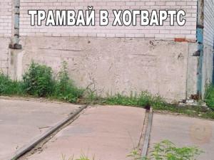 tK6bmSSl9N4.jpg