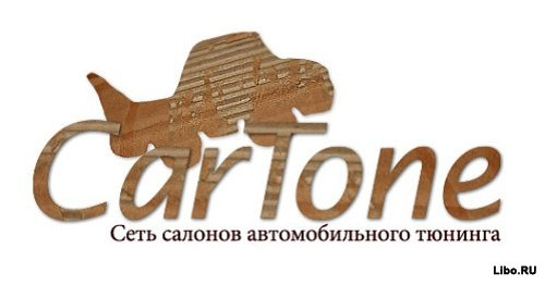 1321519541_cartone