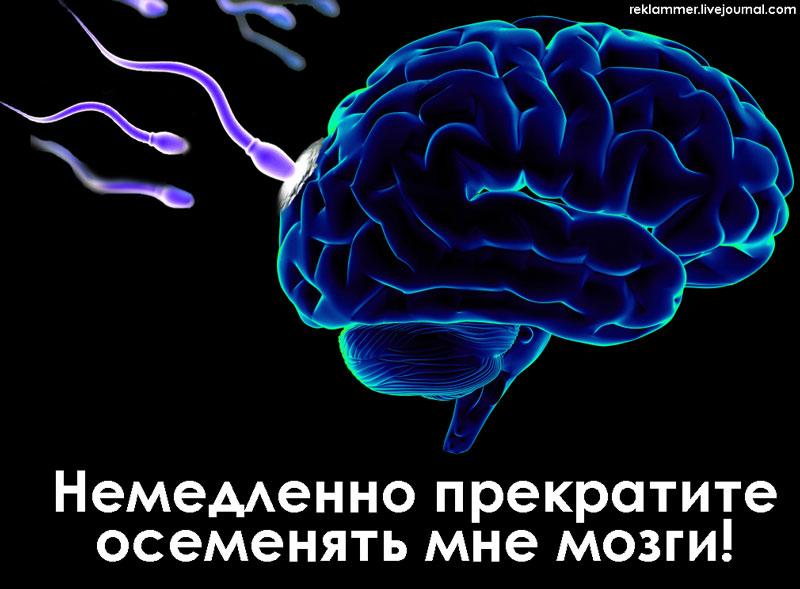 не_2,71бите_мне_мозги
