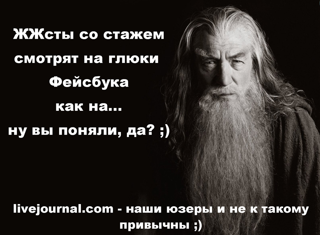 ЖЖ_рулит
