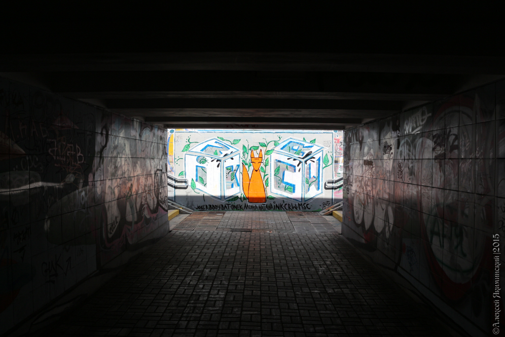 подземный переход, граффити, Подол, лисенок