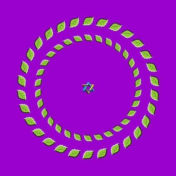 Optical-Illusions-03