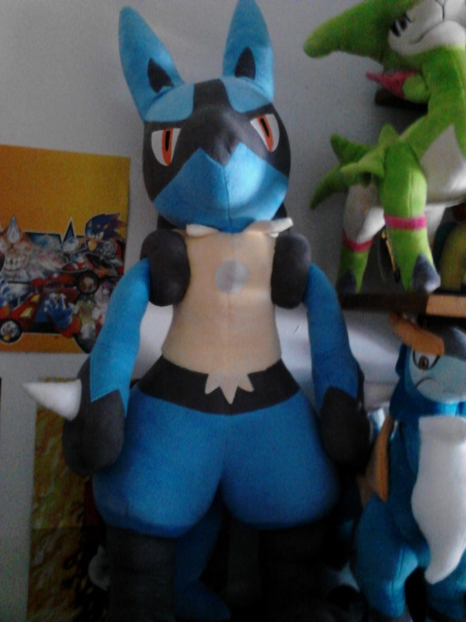 My First Post Lucario Says Hi Pkmncollectors