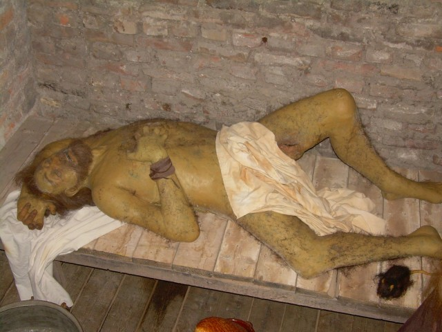 Около половины заболевших умирали еще ...: www.liveinternet.ru/users/steampunk3d/post322479313