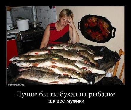 юмор рыба