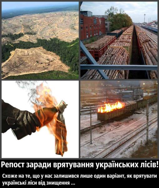 Україна на порозі екологічної катастрофи. Час рятувати Українські ліси.