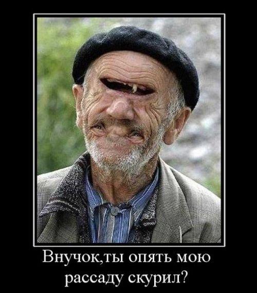 citysmile.ru_demotivator_142.jpg