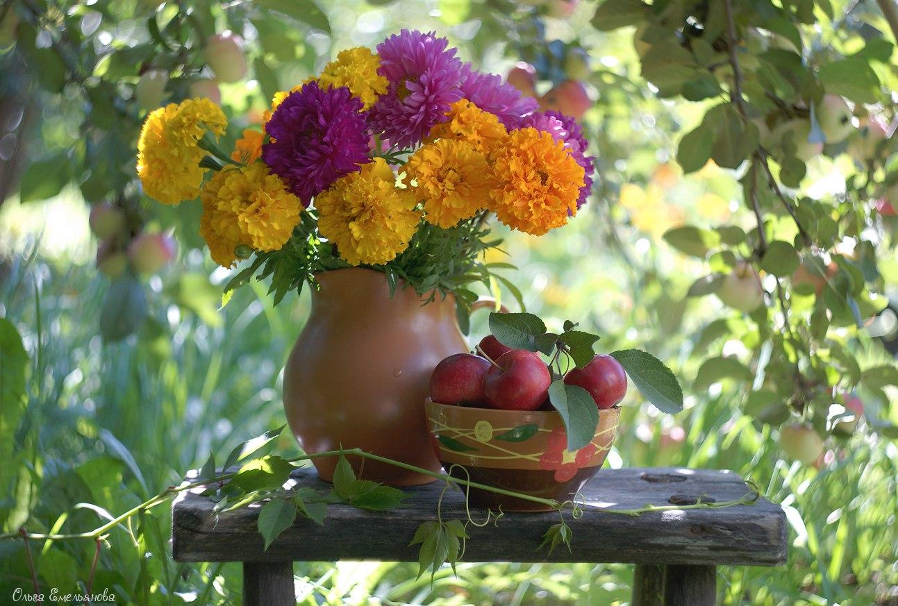 поисковый осенние цветы стихи картинки вместе играют