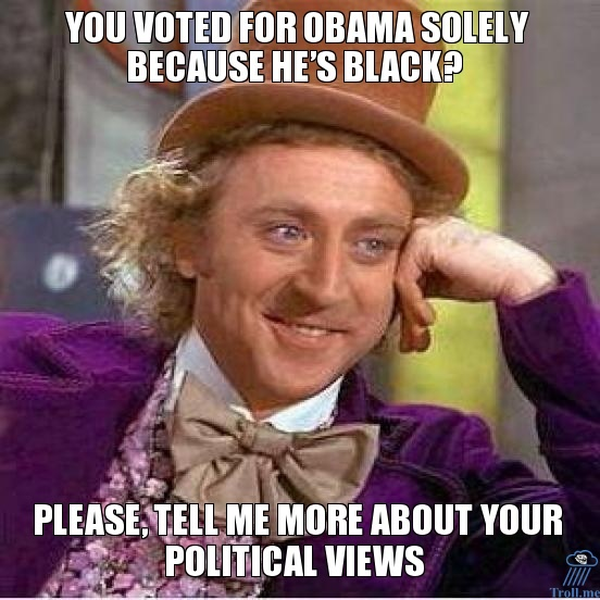you-voted-for-obama-solely-because-hes-black-please-tell-me-more-about-your-political-views